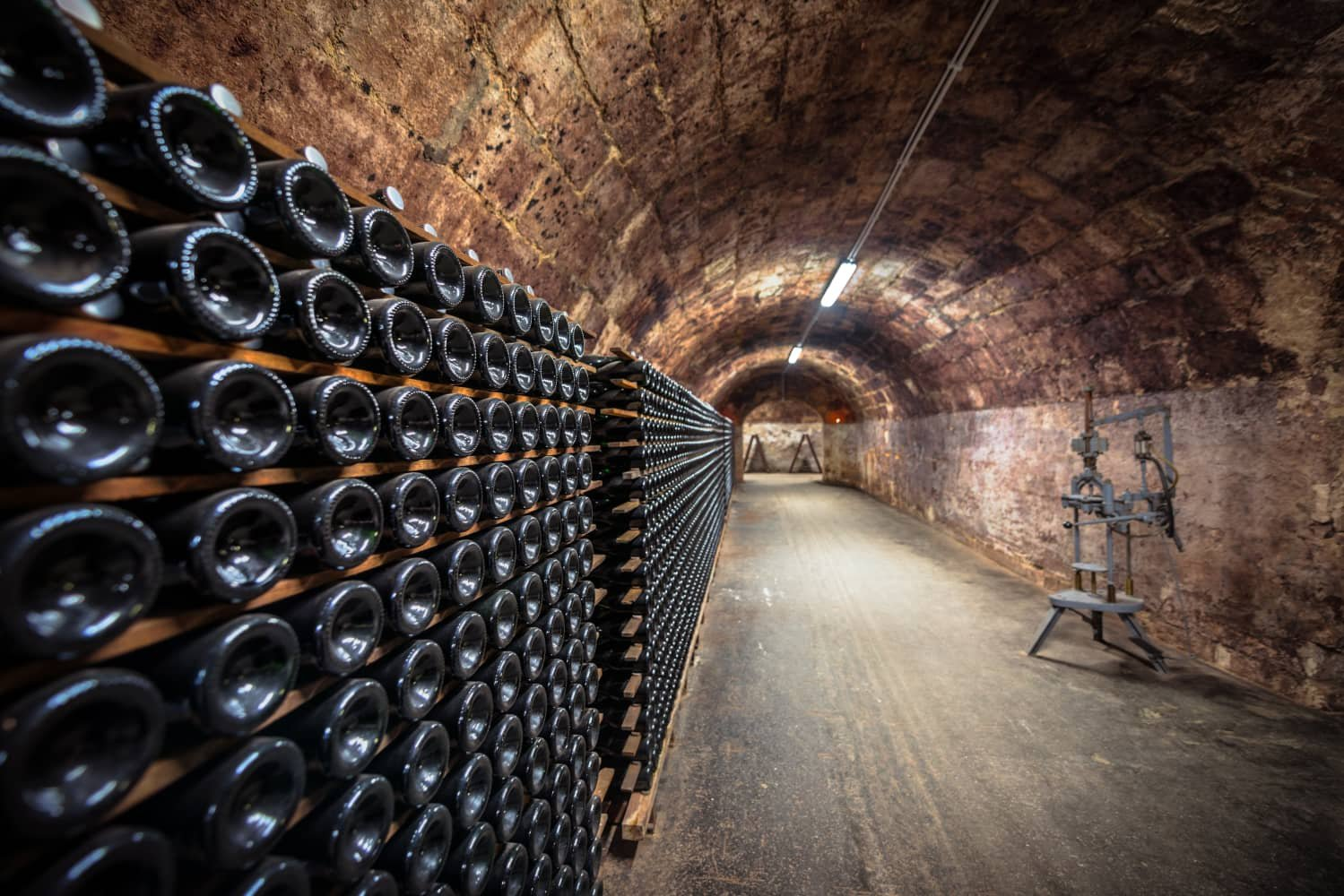 Fill your wine cellar